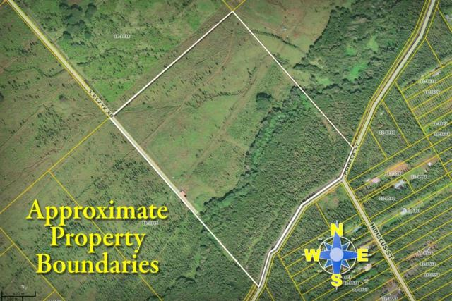 18-3780 S. Pszyk Rd, Mountain View, HI 96771 (MLS #618495) :: Aloha Kona Realty, Inc.