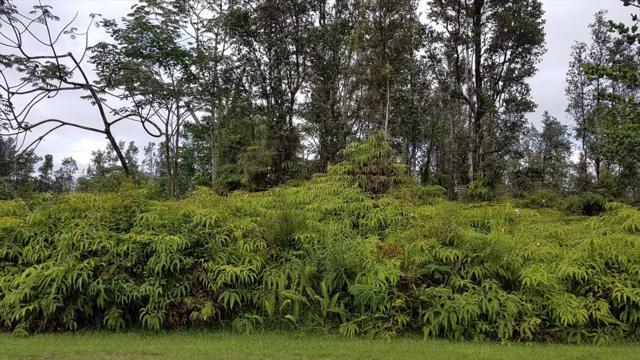 S Lai St, Pahoa, HI 96778 (MLS #618499) :: Aloha Kona Realty, Inc.