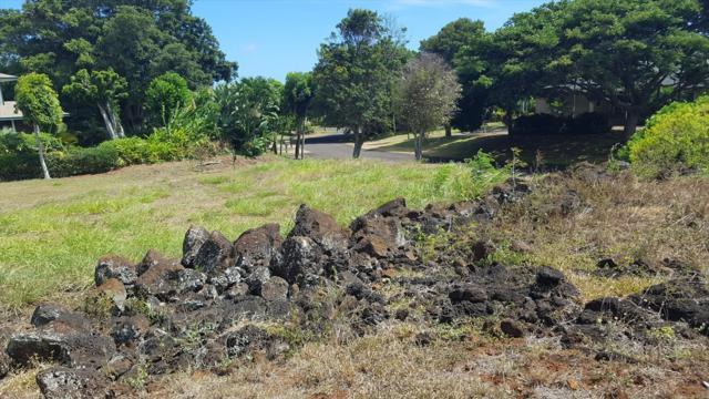 3036 Pua Akala Pl, Koloa, HI 96756 (MLS #618591) :: Kauai Exclusive Realty