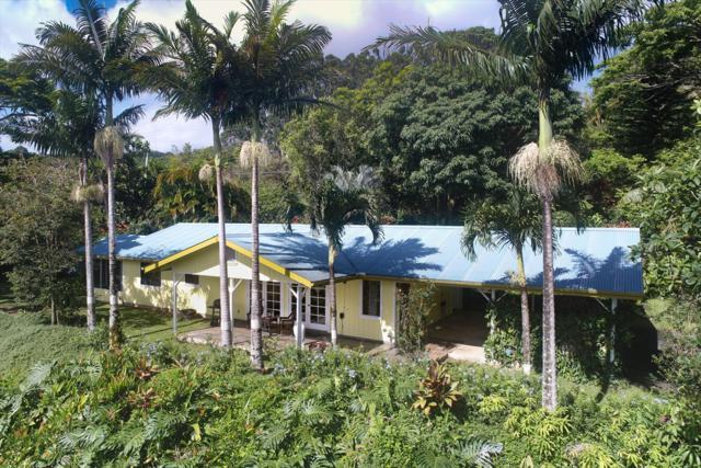 34-1122 Hawaii Belt Rd, Ninole, HI 96773 (MLS #618668) :: Elite Pacific Properties