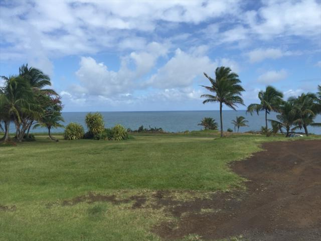 12-106 Mapuana Avenue, Pahoa, HI 96778 (MLS #618671) :: Elite Pacific Properties
