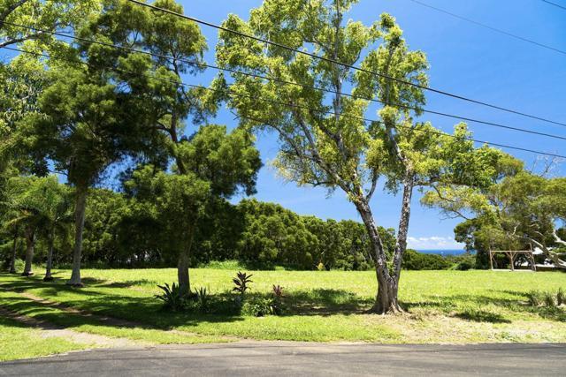 54-536 Kapaau Road, Kapaau, HI 96755 (MLS #618673) :: Elite Pacific Properties