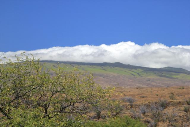 Haena St, Waikoloa, HI 96738 (MLS #618702) :: Elite Pacific Properties