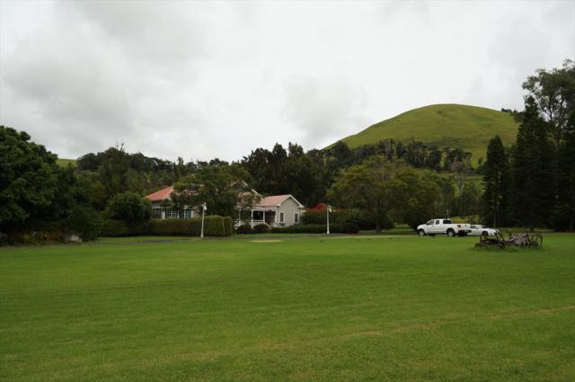65-1470 Kawaihae Rd, Kamuela, HI 96743 (MLS #618704) :: Aloha Kona Realty, Inc.