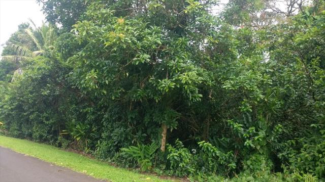 Address Not Published, Hilo, HI 96720 (MLS #618705) :: Aloha Kona Realty, Inc.