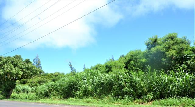 Address Not Published, Hawi, HI 96719 (MLS #618710) :: Elite Pacific Properties