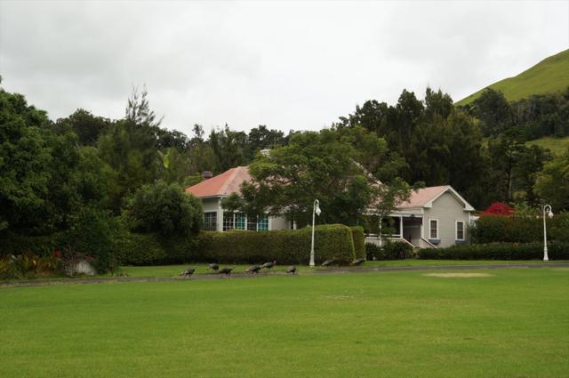 65-1444 Kawaihae Rd, Kamuela, HI 96743 (MLS #618713) :: Aloha Kona Realty, Inc.