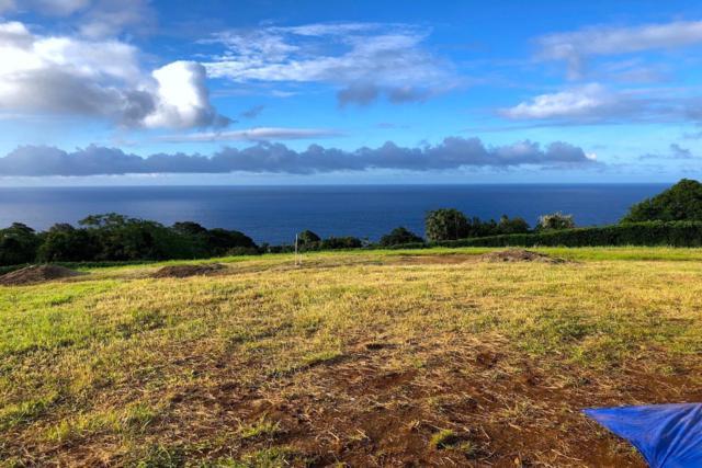 36-3357 Kuwili Lani Place, Laupahoehoe, HI 96764 (MLS #618716) :: Elite Pacific Properties