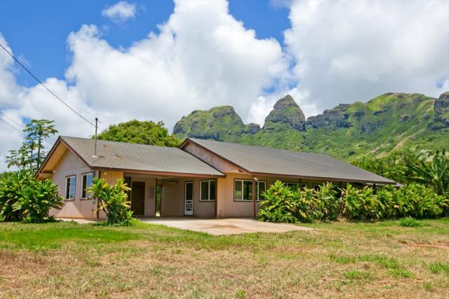 4-4941-B Kuhio Hwy, Anahola, HI 96703 (MLS #618945) :: Kauai Real Estate Group