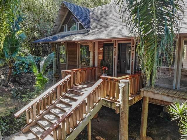 3610 Moloaa Rd, Anahola, HI 96703 (MLS #618946) :: Aloha Kona Realty, Inc.