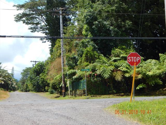 34TH AVE, Keaau, HI 96749 (MLS #618996) :: Aloha Kona Realty, Inc.