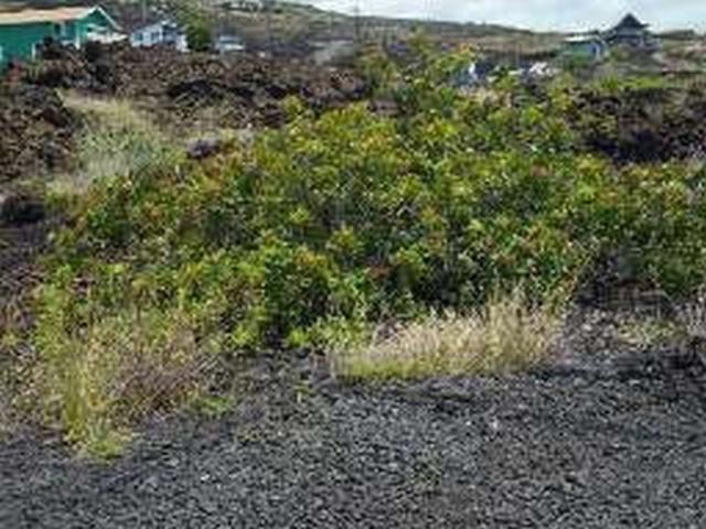 Address Not Published, Captain Cook, HI 96704 (MLS #619032) :: Aloha Kona Realty, Inc.