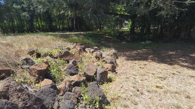 3036 Pua Akala Pl, Koloa, HI 96756 (MLS #619088) :: Kauai Exclusive Realty