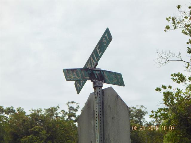 Holana St, Volcano, HI 96785 (MLS #619141) :: Aloha Kona Realty, Inc.