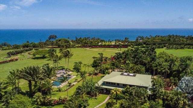 2801 Kauapea Rd, Kilauea, HI 96754 (MLS #619190) :: Elite Pacific Properties