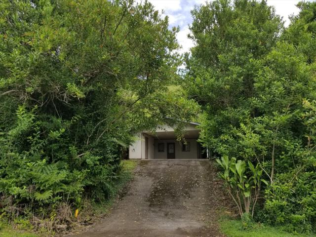 28-2855 Onomea Pl, Pepeekeo, HI 96783 (MLS #619210) :: Elite Pacific Properties