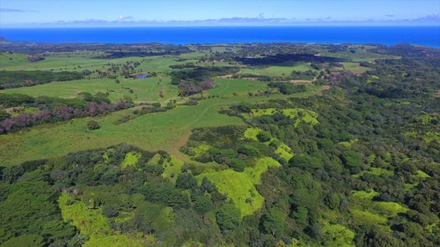 000000, Kilauea, HI 96754 (MLS #619223) :: Kauai Exclusive Realty