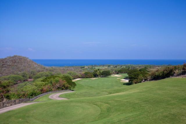 81-6555 Haokea Pl, Kealakekua, HI 96750 (MLS #619256) :: Aloha Kona Realty, Inc.