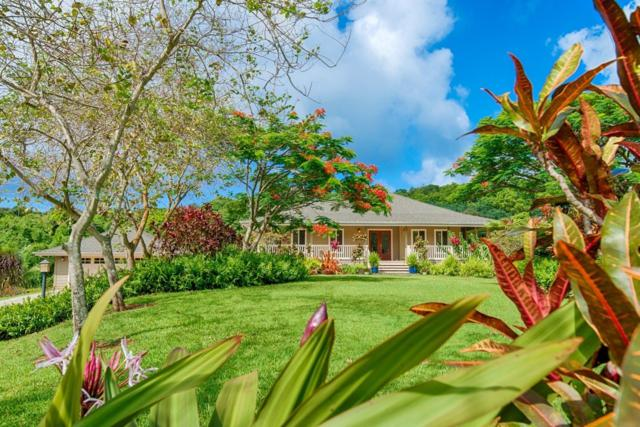6540 Koolau Rd, Anahola, HI 96703 (MLS #619278) :: Oceanfront Sotheby's International Realty