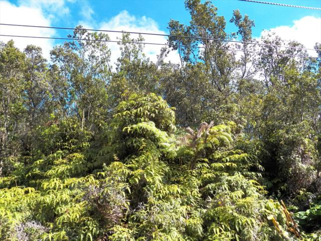 Ninth St, Volcano, HI 96785 (MLS #619302) :: Aloha Kona Realty, Inc.