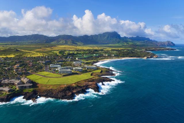 1645 Pee Rd, Koloa, HI 96756 (MLS #619452) :: Elite Pacific Properties