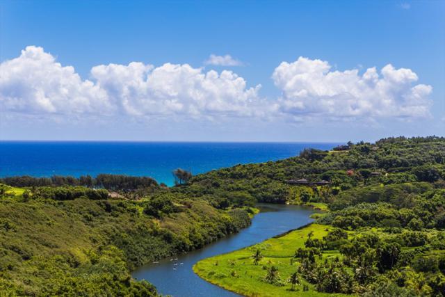 2297-H Kahili Quarry, Kilauea, HI 96754 (MLS #619483) :: Kauai Exclusive Realty