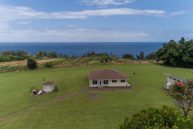 28-145 Road, Pepeekeo, HI 96783 (MLS #619486) :: Aloha Kona Realty, Inc.