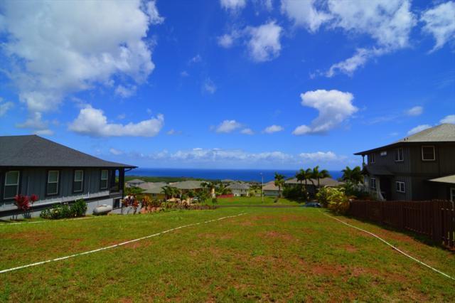 1206 Pua Melia St, Kalaheo, HI 96741 (MLS #619513) :: Kauai Exclusive Realty