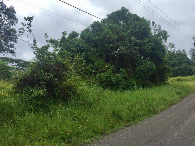 14TH AVE, Keaau, HI 96749 (MLS #619605) :: Aloha Kona Realty, Inc.