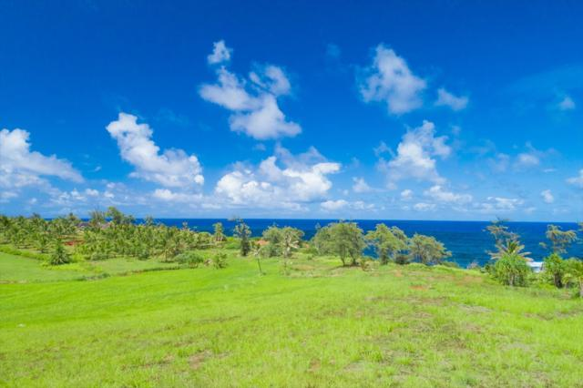 2656-B Kapoli St, Kealia, HI 96751 (MLS #619648) :: Kauai Exclusive Realty