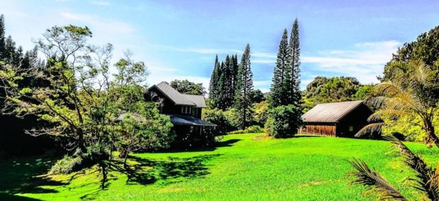 44-3015 Kalaniai Rd, Honokaa, HI 96727 (MLS #619659) :: Aloha Kona Realty, Inc.