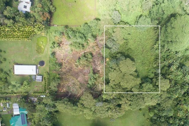 Address Not Published, Kurtistown, HI 96760 (MLS #619686) :: Elite Pacific Properties
