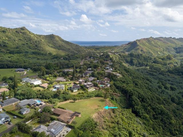 101 Melia St, Kapaa, HI 96746 (MLS #619750) :: Elite Pacific Properties