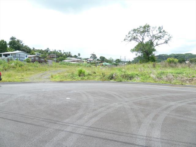 3572 Loko Place, Hilo, HI 96720 (MLS #619867) :: Elite Pacific Properties