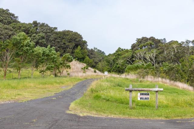 Address Not Published, Paauilo, HI 96776 (MLS #619885) :: Song Real Estate Team/Keller Williams Realty Kauai