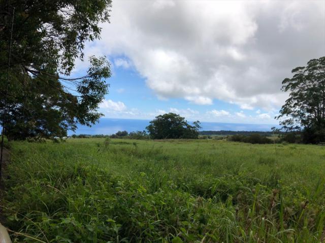 Address Not Published, Ninole, HI 96773 (MLS #619948) :: Aloha Kona Realty, Inc.