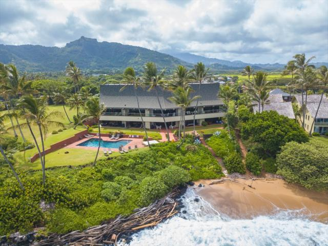 366 Papaloa Rd, Kapaa, HI 96746 (MLS #619969) :: Elite Pacific Properties