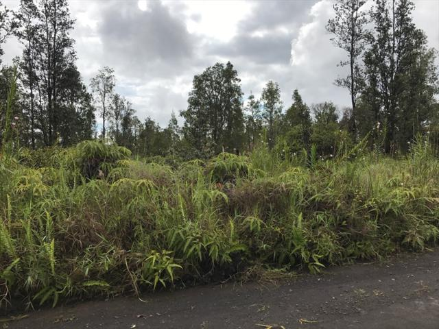 Road 1 (Uhini Ana), Mountain View, HI 96771 (MLS #619993) :: Elite Pacific Properties