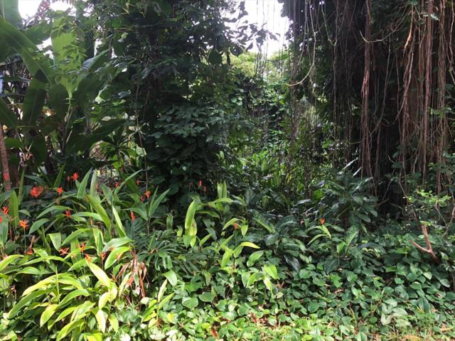 Address Not Published, Pahoa, HI 96778 (MLS #620007) :: Aloha Kona Realty, Inc.