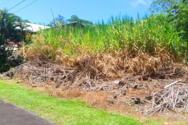 S Opakapaka St, Pahoa, HI 96778 (MLS #620096) :: Elite Pacific Properties