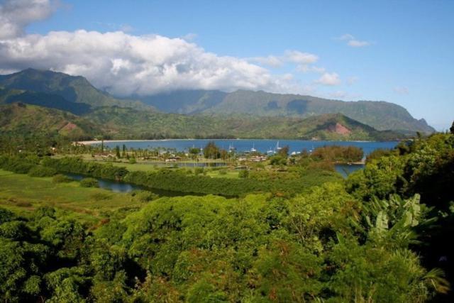 5211 Hanalei Plantation Rd, Hanalei, HI 96714 (MLS #620105) :: Kauai Exclusive Realty