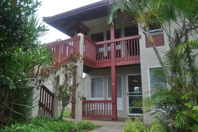 4461 Kamoa Rd, Kapaa, HI 96746 (MLS #620173) :: Elite Pacific Properties
