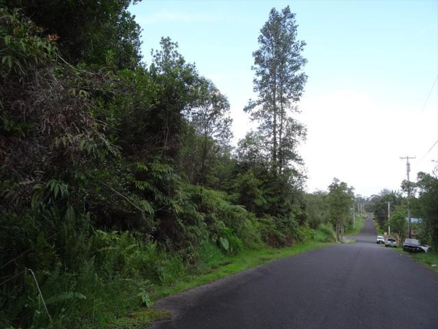 Hilohilo St, Mountain View, HI 96771 (MLS #620197) :: Aloha Kona Realty, Inc.