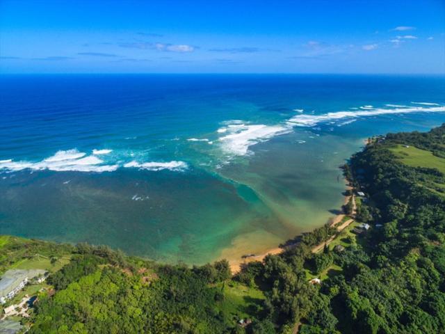 3971 Aloalii Dr, Princeville, HI 96722 (MLS #620230) :: Kauai Real Estate Group