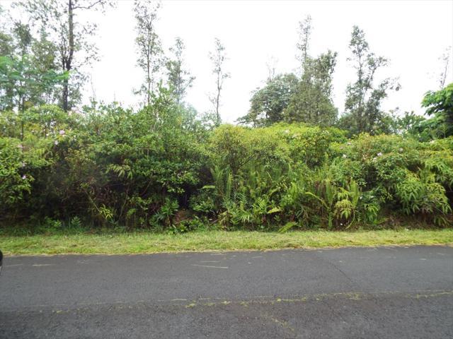 Kuleana St, Pahoa, HI 96778 (MLS #620282) :: Aloha Kona Realty, Inc.
