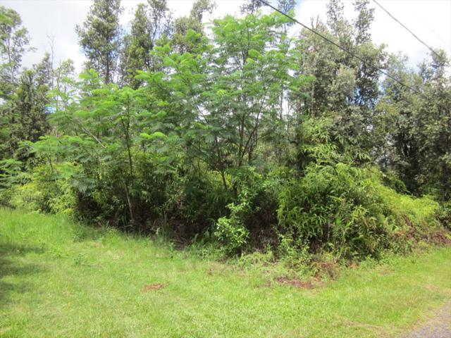 Pikake Rd, Pahoa, HI 96778 (MLS #620311) :: Elite Pacific Properties