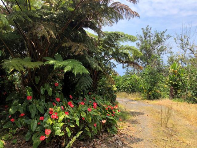 82-1133 Kalamakowali Hmstd Rd, Captain Cook, HI 96704 (MLS #620407) :: Aloha Kona Realty, Inc.