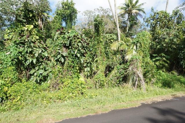 15-2761 Opihi St, Pahoa, HI 96778 (MLS #620419) :: Elite Pacific Properties