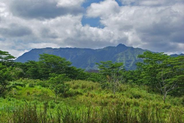 Address Not Published, Kapaa, HI 96746 (MLS #620420) :: Kauai Real Estate Group