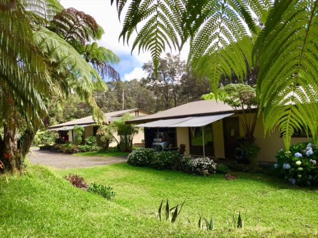 11-3857 1ST ST, Volcano, HI 96785 (MLS #620468) :: Elite Pacific Properties
